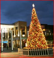 Giant Artificial Christmas Tree - Gallery