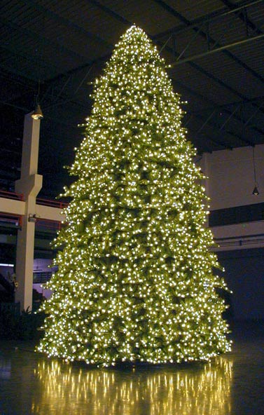 Large Foyer Indoor Christmas Tree, the - Elfhelp Christmas Decorating Service